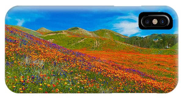 An Ocean Of Orange  IPhone Case