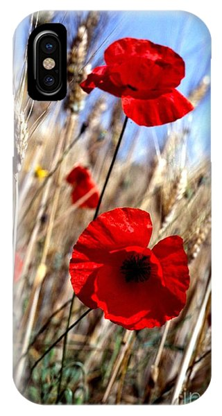 And Then They Mowed A Tuscan Field IPhone Case
