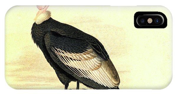 Condor iPhone Case - Andean Condor by Collection Abecasis