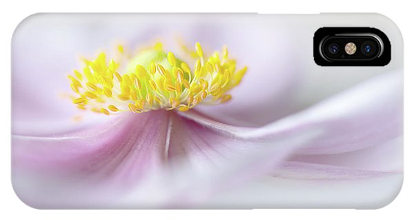 Flower Gardens iPhone Case - Anemone by Mandy Disher