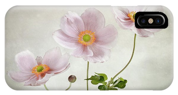 Trio iPhone Case - Anemones by Mandy Disher