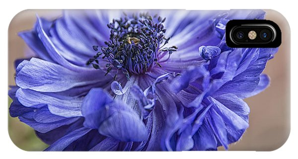 Anemone Blues I IPhone Case