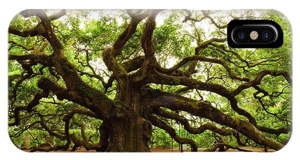 Angel Oak Tree 2009 IPhone Case