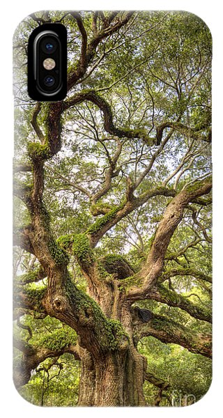 Angel Oak Tree Johns Island Sc IPhone Case