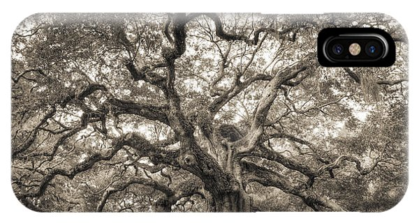 Angel Oak Tree Of Life Sepia IPhone Case