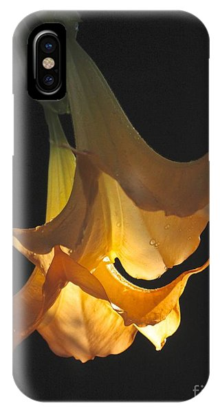 Angel's Trumpet IPhone Case
