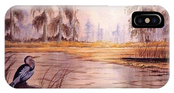 Wakulla iPhone Case - Anhinga At Wakulla Reserve by Bill Holkham