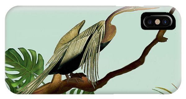 Anhinga Bird IPhone Case