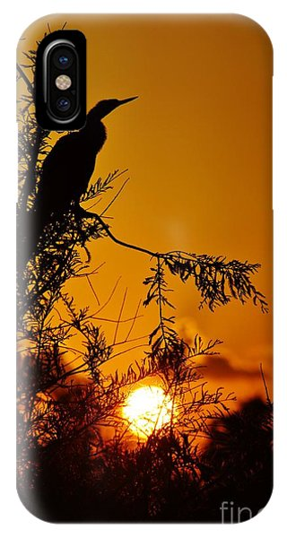 Anhinga Sunset IPhone Case