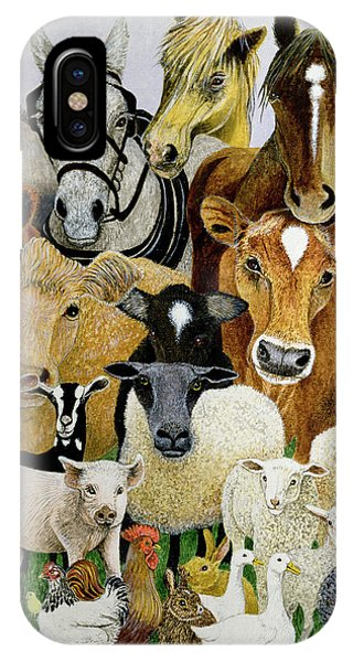 Goat iPhone Case - Animal Allsorts Oil On Canvas by Pat Scott