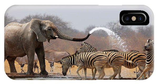 Humor iPhone Case - Animal Humour by Johan Swanepoel