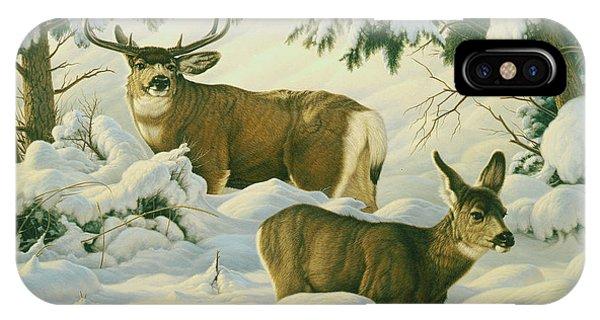 Mule Deer iPhone Case - Another Season by Paul Krapf