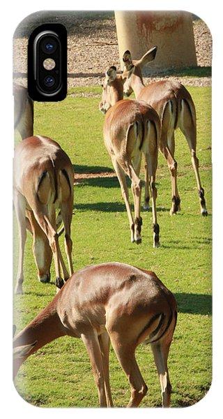 Antelopes Phone Case by Tinjoe Mbugus