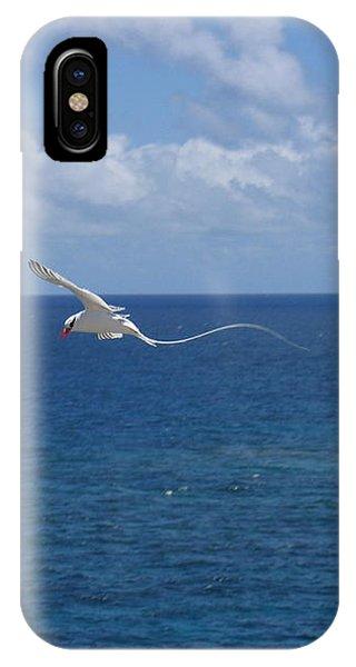 Antigua - In Flight IPhone Case