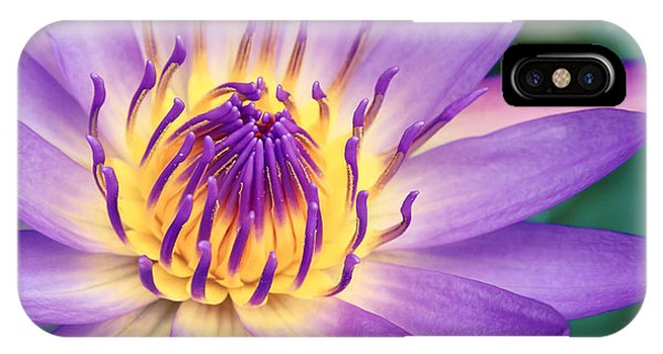 Ao Lani Heavenly Light IPhone Case