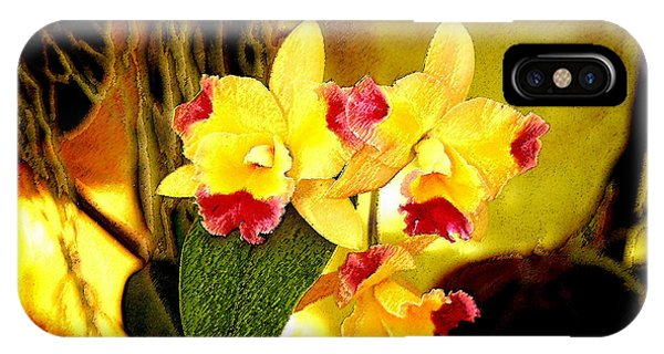 Aos Yellow Orchid 1 IPhone Case