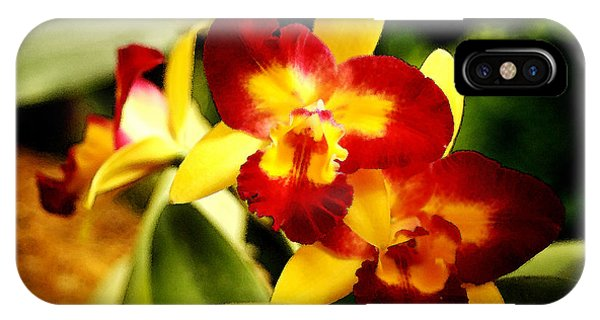 Aos Yellow Orchid 2 IPhone Case