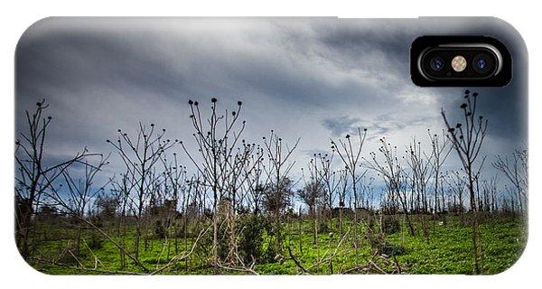Apocalyptic Landscape IPhone Case