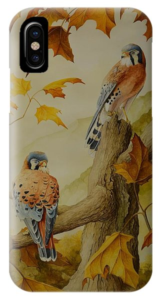 Appalachian Autumn  IPhone Case