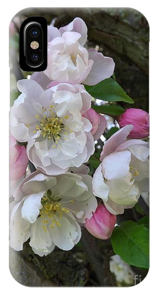 Apple Blossom Bouquet IPhone Case