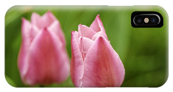 Apple Pink Tulips IPhone Case