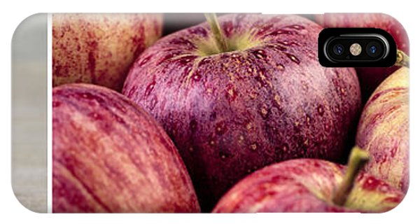 Panoramic iPhone Case - Apples 02 by Nailia Schwarz