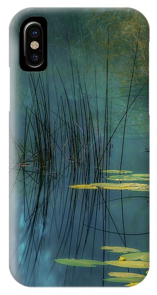 Plants iPhone Case - Aqua by Andreas Agazzi