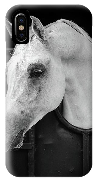White Horse iPhone Case - Arabian Horse by Waseem Al-hammad