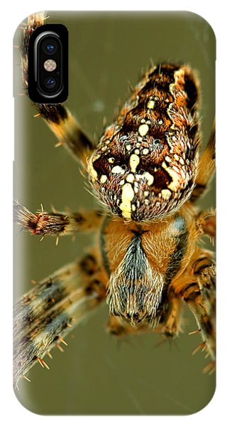 Arachnophobia IPhone Case