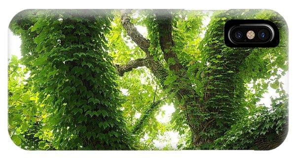 Arboretum IPhone Case