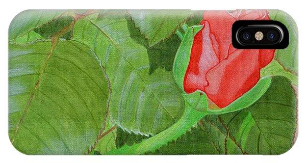 Arboretum Rose IPhone Case