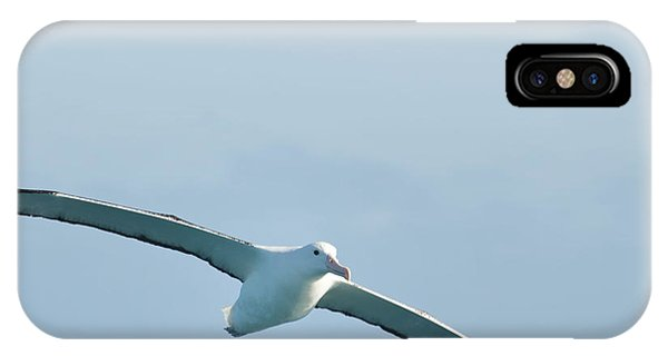 Arbornos In Flight IPhone Case