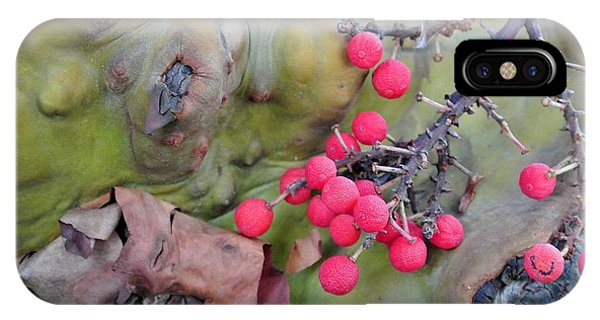 Arbutus Berries IPhone Case