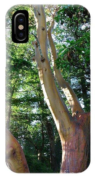 Arbutus Tree IPhone Case
