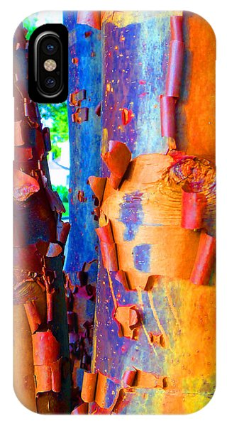 Arbutus Tree Summer IPhone Case
