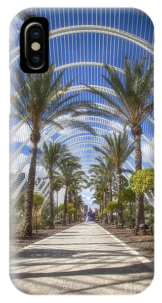 Arche With Palmtrees IPhone Case
