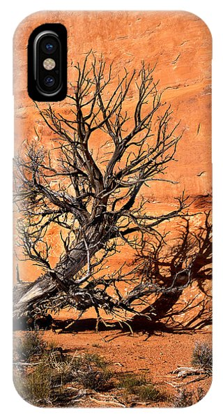 Arches Tree IPhone Case