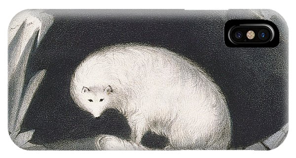 Arctic Fox, From Narrative Of A Second IPhone Case