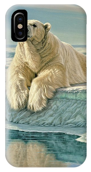 Ice iPhone Case - Arctic Heir by Paul Krapf