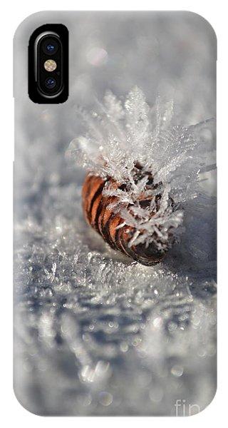 Arctic Pine Cone Porcupine IPhone Case