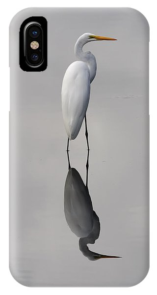 Argent Mirror IPhone Case
