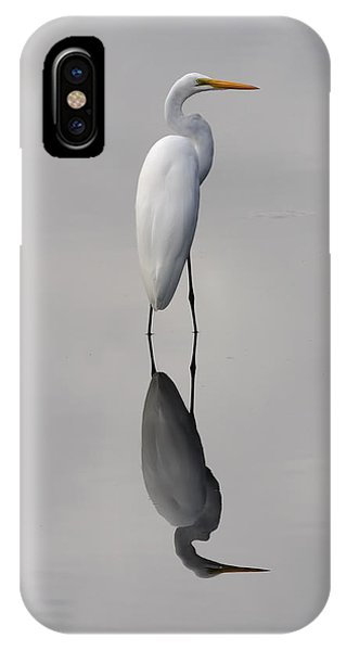 Argent Mirror IPhone Case
