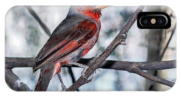 Arizona Cardinal IPhone Case
