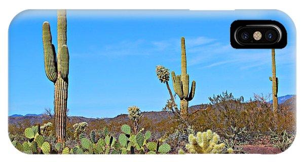 Cylindropuntia Bigelovii iPhone Case - Arizona Desert by Paul Fell