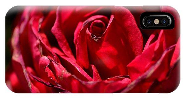 Arizona Rose I IPhone Case