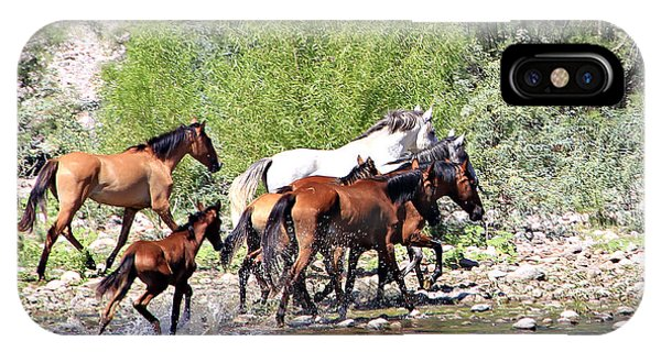 Arizona Wild Horse Family IPhone Case