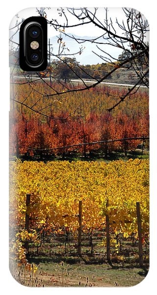 Around And About In My Neck Of The Woods Series 28 IPhone Case