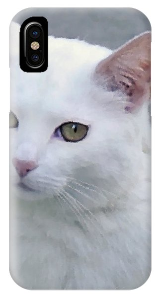 Art Cat IPhone Case