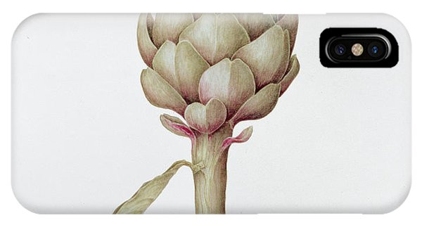 Different iPhone Case - Artichoke by Diana Everett