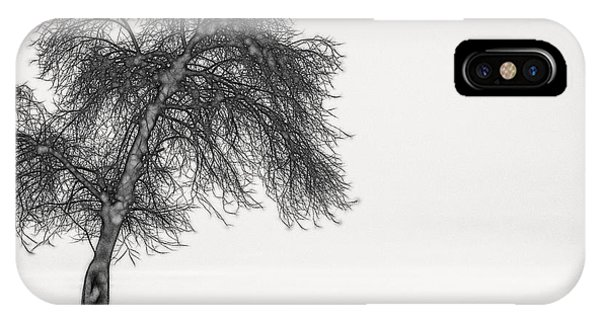 Artistic Black And White Sunset Tree IPhone Case